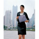 New Design Notebook Cooling Bag (China)