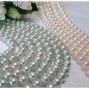 Akoya Pearls Necklace (Japan)